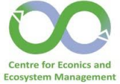 Logo Centre for Econics