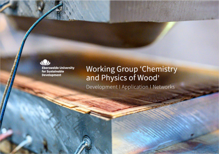 Brochure Chemistry and Physics of Wood